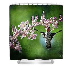 Hummingbird  Shower Curtain by Saija  Lehtonen