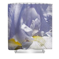 Iris Flowers Shower Curtain by Tony Cordoza