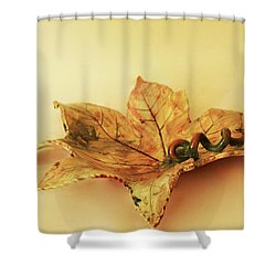 Leaf Plate1 Shower Curtain by Itzhak Richter