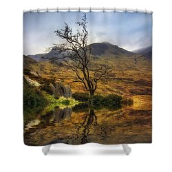 Lone Tree Shower Curtain by Ian Mitchell