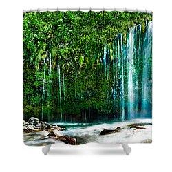 Mossbrae Falls Shower Curtain