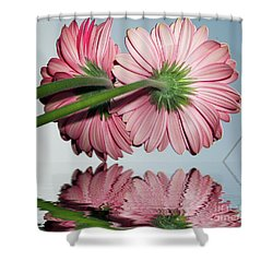Pink Gerbers Shower Curtain by Elvira Ladocki