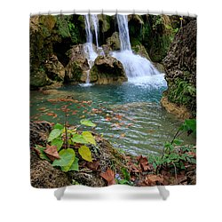 Price Falls In Autumn Color.  Shower Curtain
