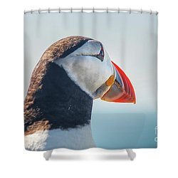 Shower Curtain featuring the photograph Puffin In Close Up by Patricia Hofmeester