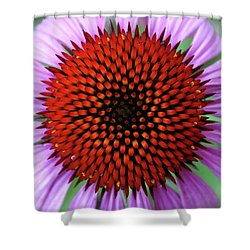 Shower Curtain featuring the photograph Purple Coneflower  by Rebecca Overton