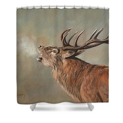 Shower Curtain featuring the painting Red Deer Stag by David Stribbling
