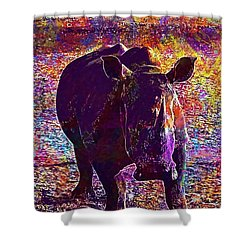 Shower Curtain featuring the digital art Rhino Africa Namibia Nature Dry  by PixBreak Art