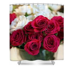 Roses Shower Curtain by Amanda Barcon