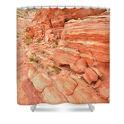 Shower Curtain featuring the photograph Sandstone Wall In Valley Of Fire by Ray Mathis