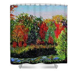 Sewp 10 10 Shower Curtain by Stan Hamilton
