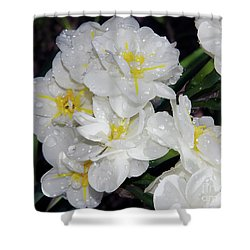 Shower Curtain featuring the photograph Spring Flower by Elvira Ladocki