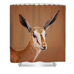 Springbok Portrait Shower Curtain by Johan Swanepoel