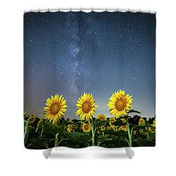 Sunflower Galaxy Iv Shower Curtain