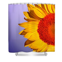 Sunflowers Shower Curtain by Mark Ashkenazi