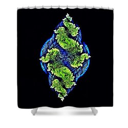 Tautological Fractals Shower Curtain
