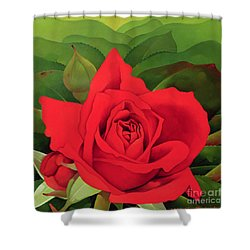 The Rose Shower Curtain by Myung-Bo Sim