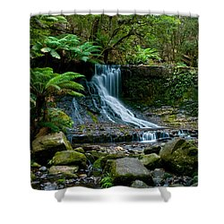Waterfall In Deep Forest Shower Curtain by Ulrich Schade