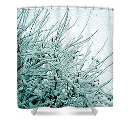 Shower Curtain featuring the photograph Winter Wonderland In Switzerland by Susanne Van Hulst