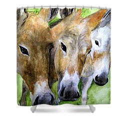 3 Wise Mules Shower Curtain