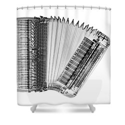 X Ray Of An Accordion Shower Curtain