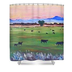 #30 Waking Up Shower Curtain