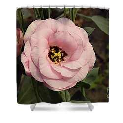 Pink Flowers Shower Curtain by Elvira Ladocki