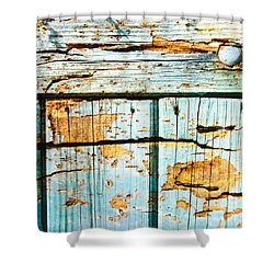 Wooden Background Shower Curtain