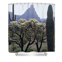 313737 Montezumas Head Shower Curtain
