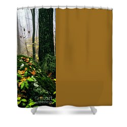 Autumn Monongahela National Forest Shower Curtain