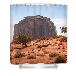 #3328 - Monument Valley, Arizona Shower Curtain