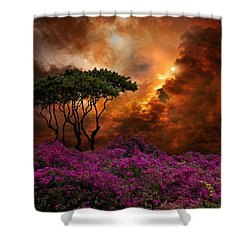 3957 Shower Curtain by Peter Holme III