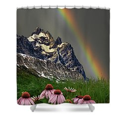 3960 Shower Curtain by Peter Holme III