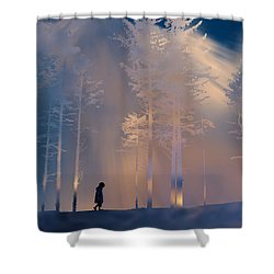 3991 Shower Curtain by Peter Holme III