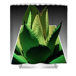 3d Cactus Shower Curtain by Darleen Stry