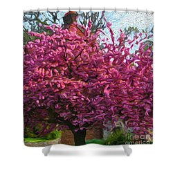 4-19-2057l Shower Curtain
