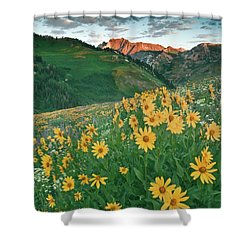 Albion Basin Wildflowers Shower Curtain