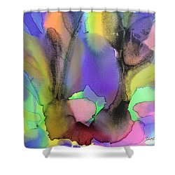 4 Art Abstract Painting Modern Color Signed Robert R Erod Shower Curtain