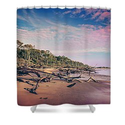 Shower Curtain featuring the photograph Black Rock Beach by Peter Lakomy