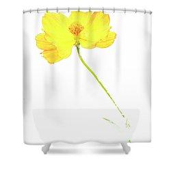 Cosmos Flower Shower Curtain