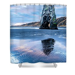 Dinosaur Rock Beach In Iceland Shower Curtain