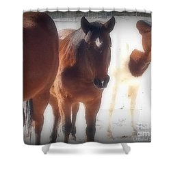 Friends Shower Curtain