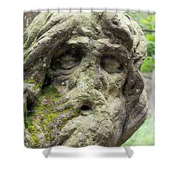 Hermit Juan Garin Shower Curtain by Michal Boubin