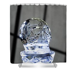 Ice Skullpture Shower Curtain