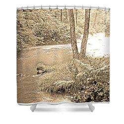 Shower Curtain featuring the photograph Mud Run Pocono Mountain Stream Pennsylvania by A Gurmankin