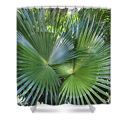 Palm Fronds Shower Curtain