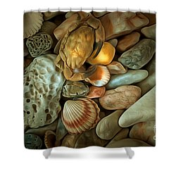 Pebble Stones Shower Curtain by Michal Boubin