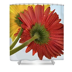 Red And Yellow Shower Curtain by Elvira Ladocki