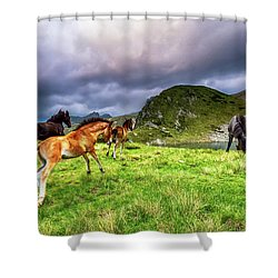 Rila Mountain Shower Curtain by Evgeni Dinev