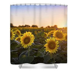 Sunflower Sunset Shower Curtain