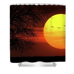 Shower Curtain featuring the photograph Sunset by Bess Hamiti